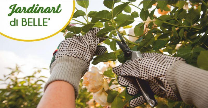 jardinart offerta potatura alberi alto fusto - occasione aree verdi massa carrara