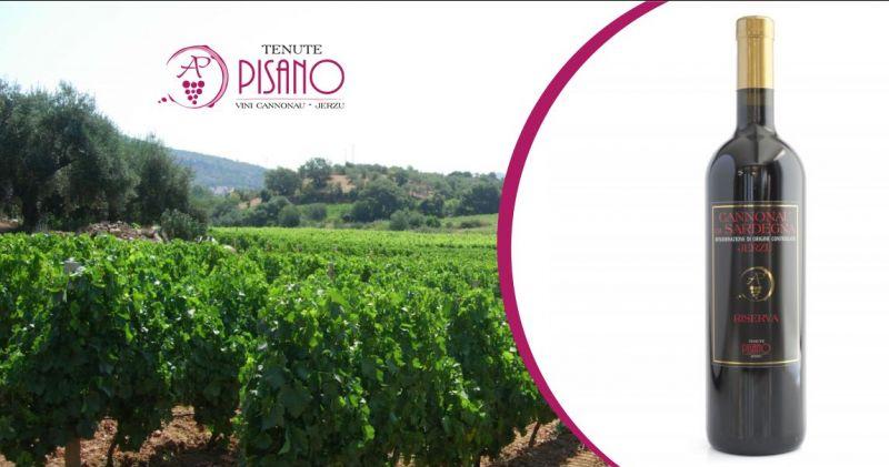 TENUTE PISANO Jerzu - offerta vino rosso uve Cannonau di Sardegna Riserva