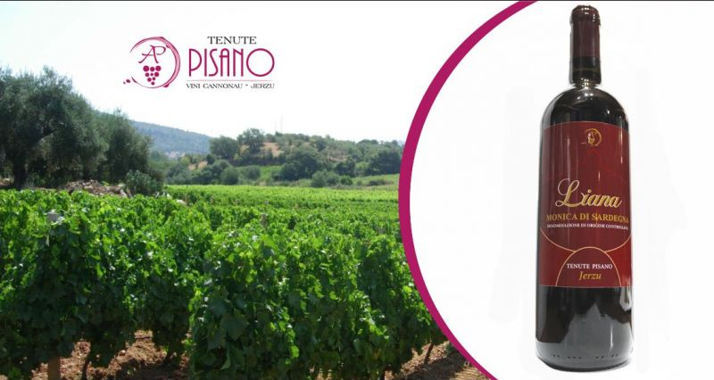TENUTE PISANO Jerzu - offerta vino rosso Liana monica di Sardegna