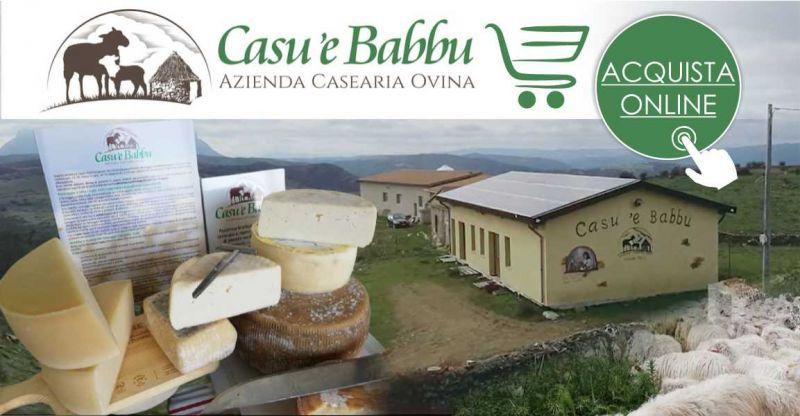 Azienda ovino casearia CASU E BABBU - offerta Dilica pecorino tradizionale semistagionato di Lode