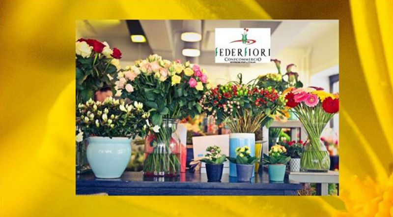 offerta fioreria e vendita al dettaglio di fiori e piante