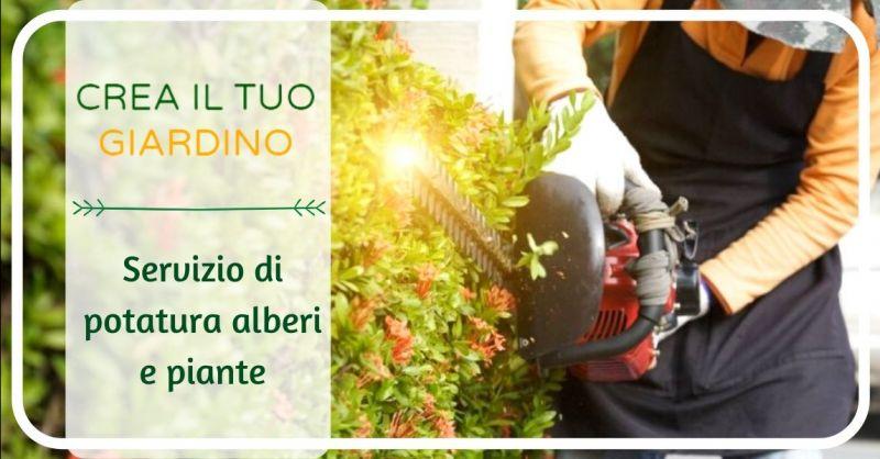 Occasione potatura alberi ad alto fusto Bologna - offerta servizio professionale potatura piante