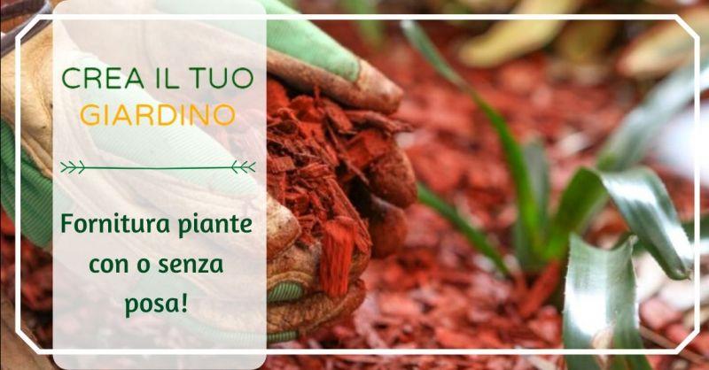 CREA IL TUO GIARDINO - Offerta fornitura piante con o senza servizio di posa in opera Bologna