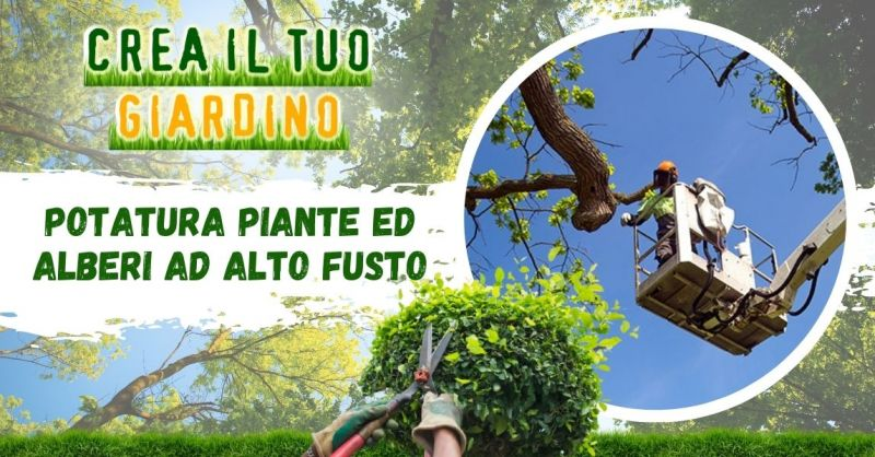 CREA IL TUO GIARDINO - Offerta Servizio professionale di potatura alberi ad alto fusto Modena