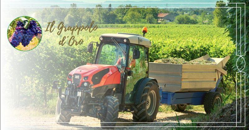 Offerte ricerca carrellista trattorista con patentino Vicenza - offerta lavoro stagionale agricolo
