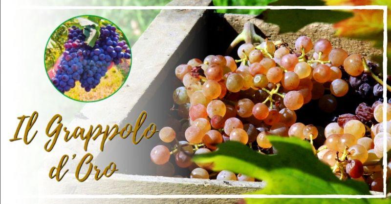 Occasione servizio raccolta d'uva il grappolo d'oro Vicenza - offerta lavoro vendemmia Verona