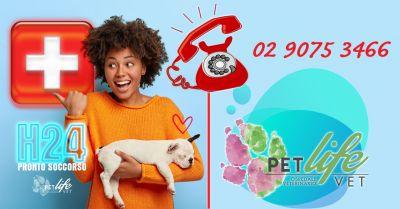 offerta pronto soccorso veterinario milano occasione veterinario aperto h24 a milano