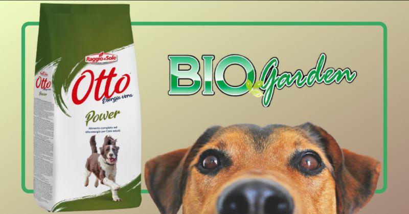 offerta crocchette per cani otto ragusa - occasione crocchette per cani alta energia vittoria