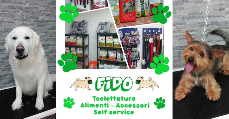 Offerta Lavaggio Self Service Animali Domestici Osimo - Occasione Alimenti Toelettatura Animali Domestici Osimo