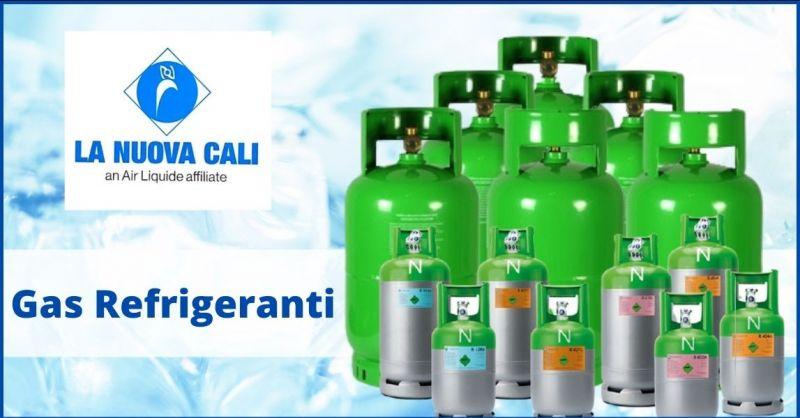 occasione vendita Gas refrigeranti per climatizzatori e frigoriferi Versilia - LA NUOVA CALI