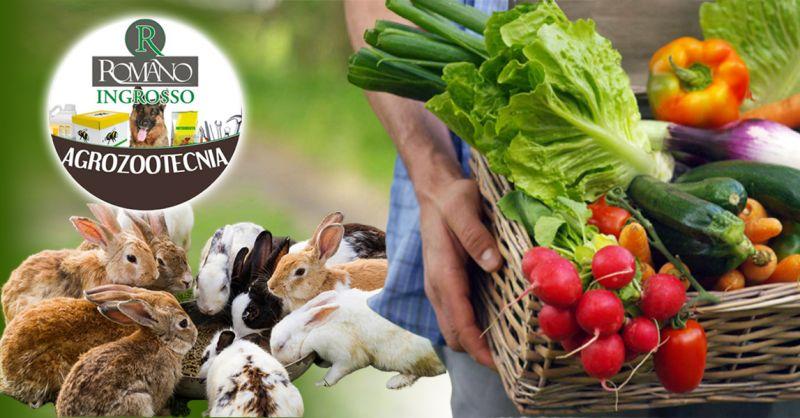 Offerta Vendita ingrosso prodotti agrozootecnici Ragusa - Occasione mangimi e prodotti agricoli Ragusa