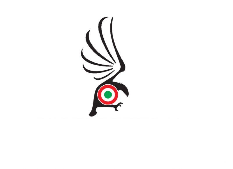 Garda Eagle ScuolaVolo VDS Attestato Licenza Corsi - Occasione iscrizione corsi scuola di Volo