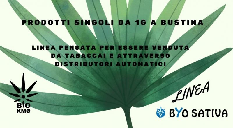 Vendita di canapa legale da 1 grammo a Treviso – Offerta infiorescenza e canapa pressata a Treviso