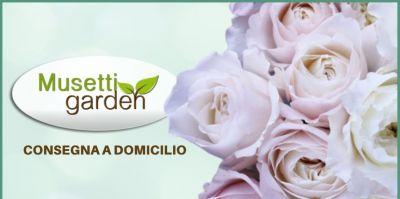 musetti garden vendita piante e fiori con consegna a domicilio in tutta italia