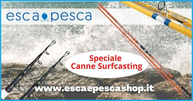 promozione canne da pesca Surf Casting in vendita on line a prezzi convenienti - ESCA E PESCA