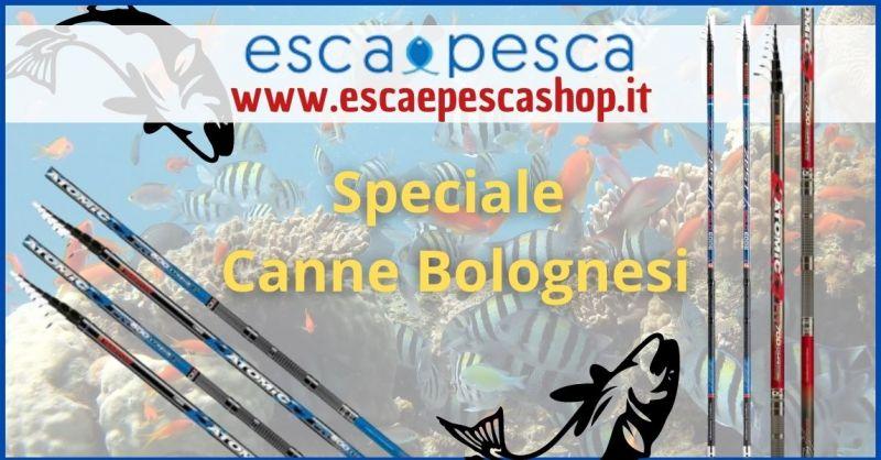 occasione canne da pesca Bolognese in offerta a prezzi imbattibili - ESCA E PESCA