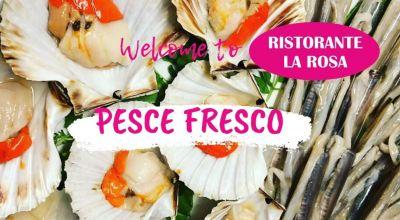 occasione ristorante con pesce di mare ogni giorno fresco a treviso vendita menu con pesce crudo crostacei a treviso