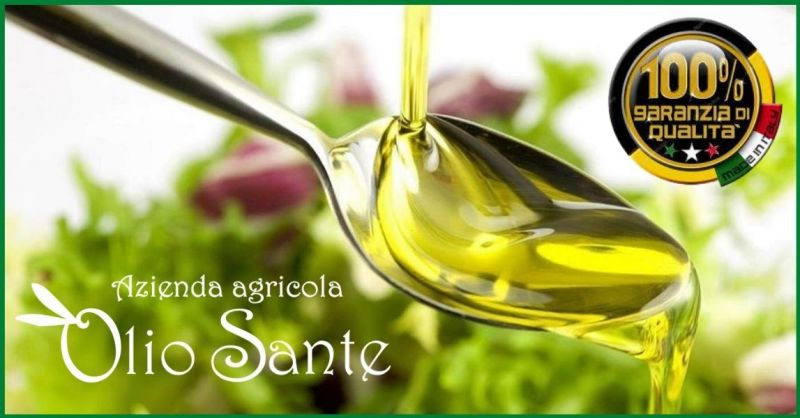 Azienda Olio Sante - Trova la migliore produzione artigianale olio EVO Pugliese monovarietale