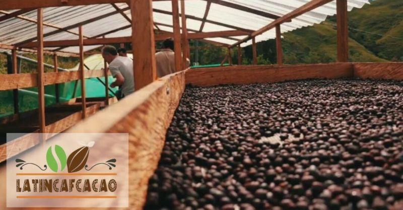 LatinCaFcacao - Trova il miglior distributore Italiano di caffè venezuelano e sudamericano