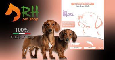 offerta crocchette salmone e trota maxi grain free occasione migliori crocchette per cani allergici o con problemi cutanei