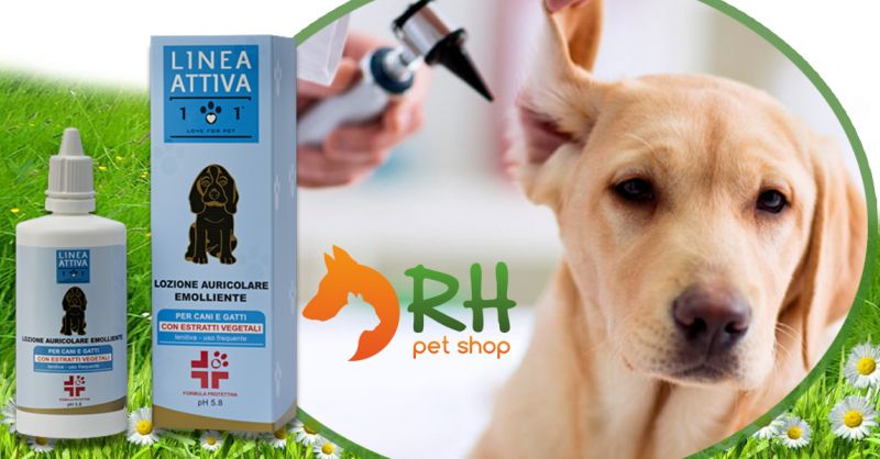 Offerta Prodotto professionale per la pulizia orecchio del Cane - Occasione Prodotti cura Otite Cane