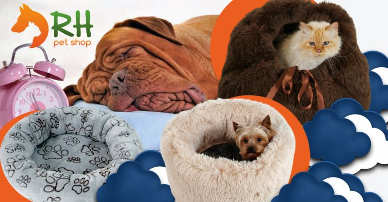 Offerta Vendita Letti cuscini e cucce da interno per cani - Occasione Cuccia di peluche per cani di piccola taglia