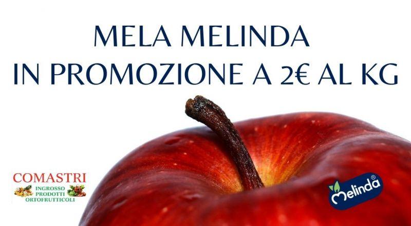 Occasione mele Melinda scontate a Modena Sassuolo – Offerta mele scontate a Modena Sassuolo
