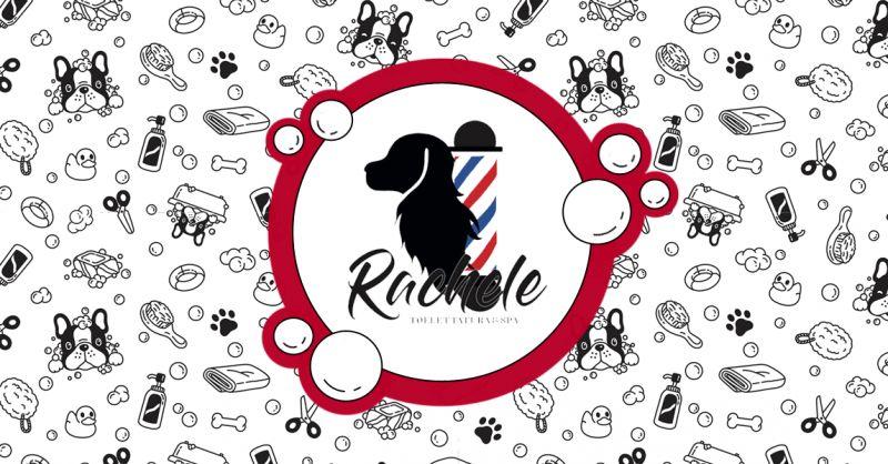 Offerta Stripping Trimming Ancona - Occasione Idromassaggio con ozono per cani e gatti Ancona