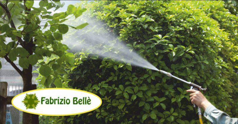 belle fabrizio offerta impianti di irrigazione giardino massa - occasione irrigazione giardini carrara