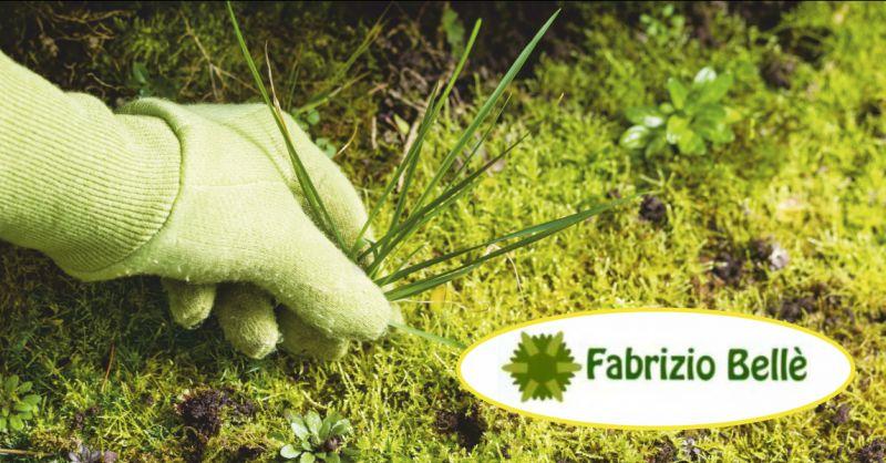 belle fabrizio offerta giardiniere posa in opera tappeto erboso sintetico massa carrara