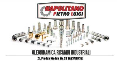 napolitano pietro luigi offerta ricambi oleodinamici e componenti pneumatici settore industriale