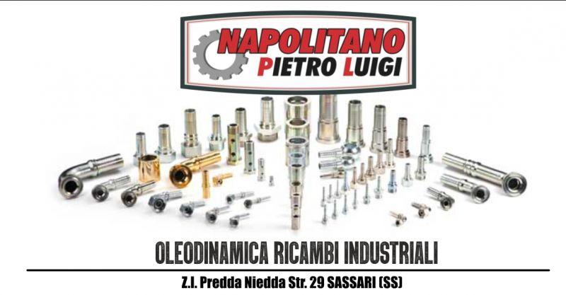 Napolitano Pietro Luigi - offerta ricambi oleodinamici e componenti pneumatici settore industriale