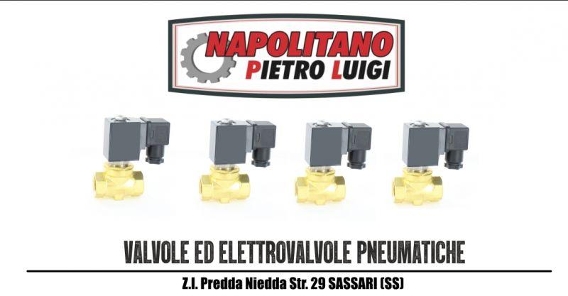 Napolitano Pietro Luigi - offerta vendita e sostituzione valvole ed elettrovalvole pneumatiche