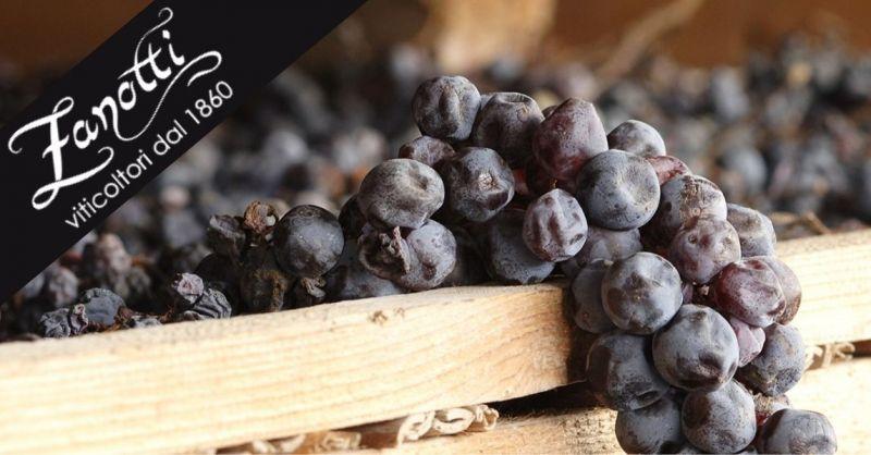 Azienda agricola Zanotti Diego - Promozione vendita vini pregiati Valpolicella Recioto Amarone