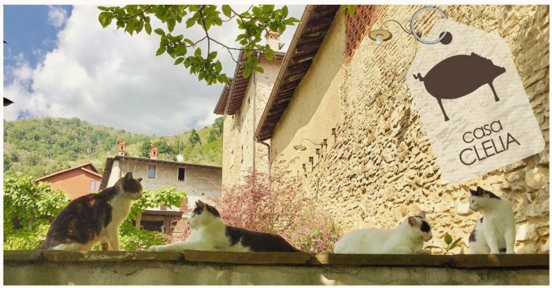 AGRITURISMO CASA CLELIA - Aanbieding overnachting B&B Hotel in de plaats Monte Canto Bergamo Lombardije