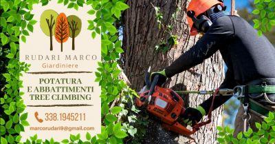 offerta servizio abbattimento alberi tree climbing verona occasione potatura alberi ad alto fusto provincia verona