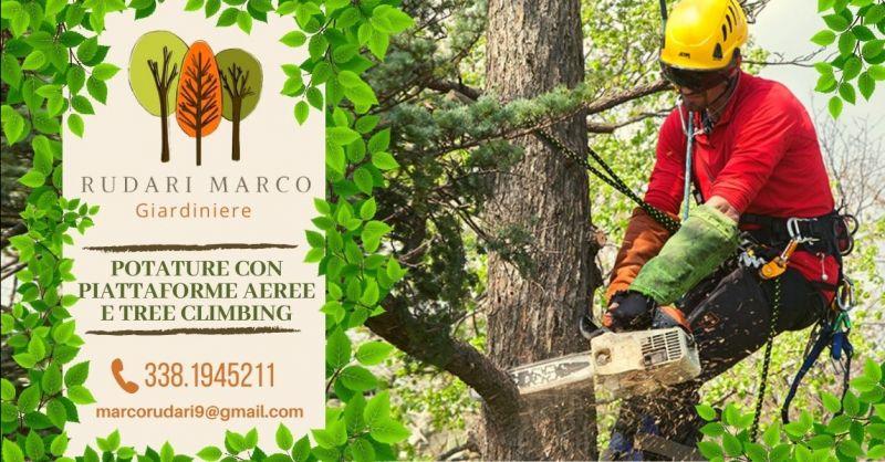 Offerta potatura alberi tree climbing Verona - Occasione abbattimento alberi alto fusto provincia Verona