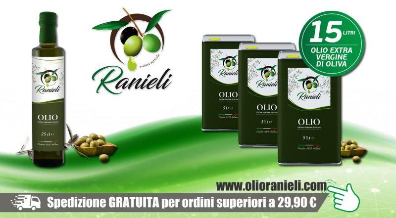 Azienda Agricola Fratelli Ranieli - promozione produzione olio extravergine oliva calabria vibo valentia - occasione vendita online extravergine oliva