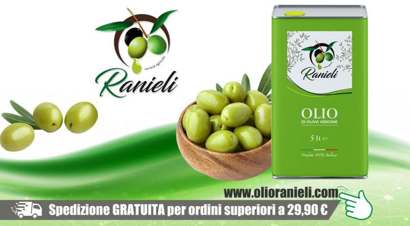 Azienda Agricola Fratelli Ranieli - promozione olio oliva vergine italiano vibo valentia - promozione vendita lattina olio oliva vergine