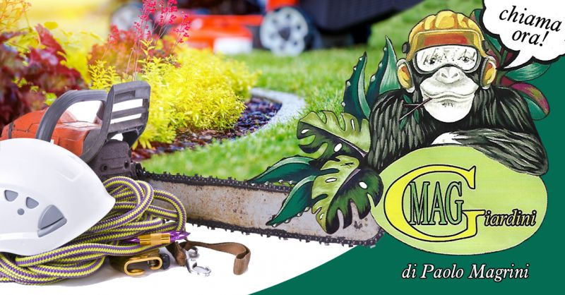 Offerta Giardinaggio Numana - Occasione Realizzazione Giardini Gestione Aree Verdi Numana