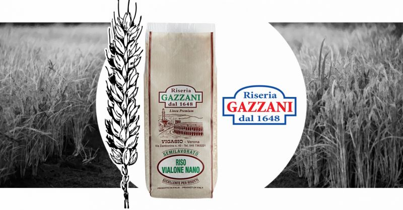 RISERIA GAZZANI - Occasione Vendita online Riso di qualità Semilavorato VIALONE NANO