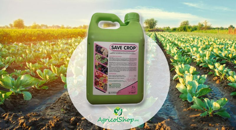 Agricolshop snc - offerta vendita online Save Crop di fertenia protezione dal gelo
