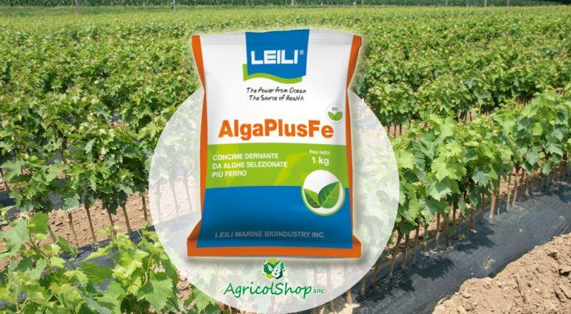 AgricolShop - OFFERTA ALGA PLUS FE CONCIME DERIVANTE DA ALGHE SELEZIONATE CON FERRO