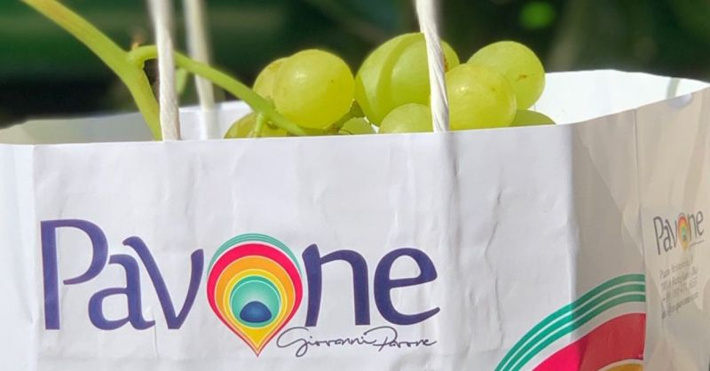 Angebot landwirtschaftliche Produktion und Verkauf von Bio-Tafeltrauben made in Italy - AZIENDA AGRICOLA PAVONE