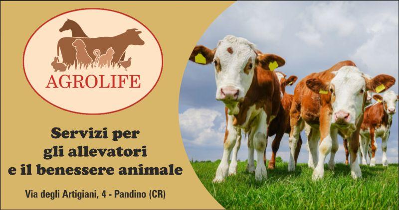 agrolife offerta prodotti per zootecnica cremona - occasione prodotti per agricoltura e allevamento cremona