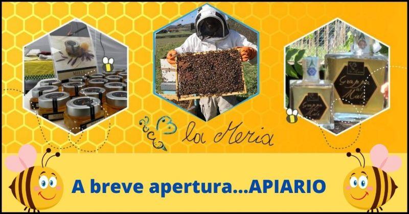 AZIENDA AGRICOLA LA MERIA - promozione vendita miele biologico Grosseto