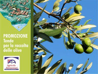 offerta tende per raccolta olive promozione teloni olive agricola alimentari paceco