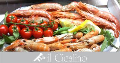 il cicalino offerta dove mangiare specialita di pesce fresco in centro terni