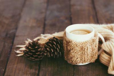 offerta vendita di cialde per infusi tisane promozione vendita capsule per bevande calde