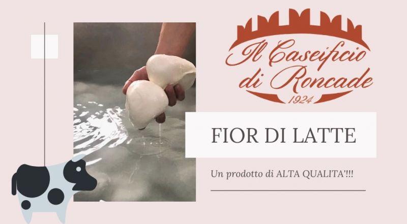 Vendita prodotti caseari artigianali fior di latte a Treviso - Occasione bocconcini fior di latte a Treviso